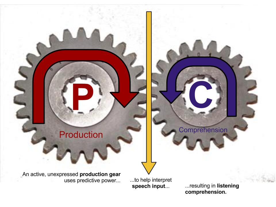 P & C - INPUT